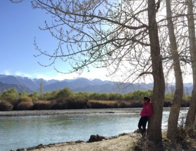 Spend Time at River Indus Camping in Leh Ladakh