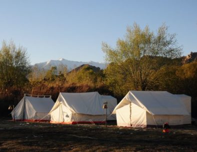 Tents at camping Leh