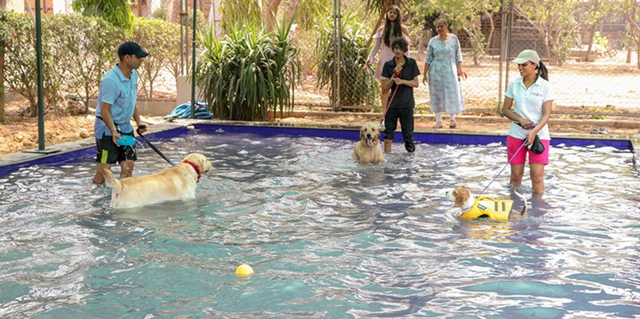 pet friendly resorts near delhi
