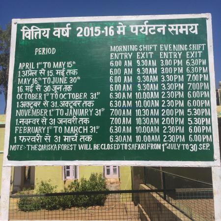 sariska safari timings