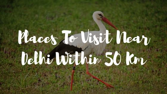 places to visit near delhi within 50 km