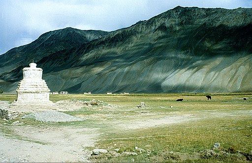 padum places to visit leh ladakh